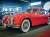 Flanders-Collection-Cars-11