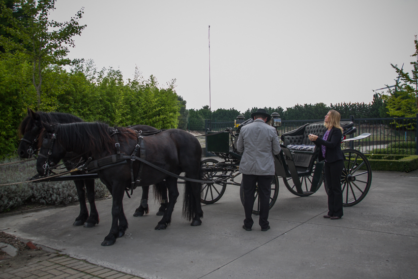 paardenparade-10