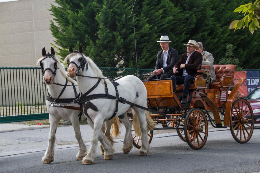 paardenparade-25