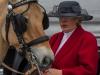 paardenparade-17