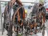 paardenparade-2