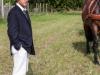 paardenparade-49