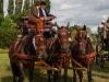 paardenparade-50
