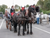 paardenparade-60