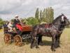 paardenparade-74