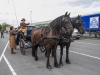 paardenparade-8